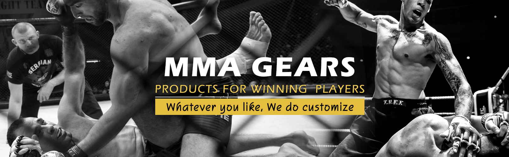 Manufacturers and Exporters of Free Fighting MMA Products